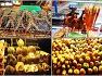 베트남/다낭 여행 호이안 시내 관광 함께 즐기기(4)