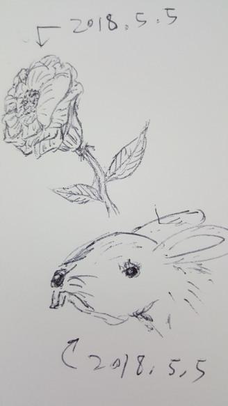 [낙서]꽃과 토끼